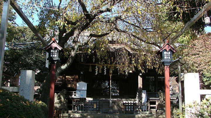 東京都文京区白山5丁目  - goo地図