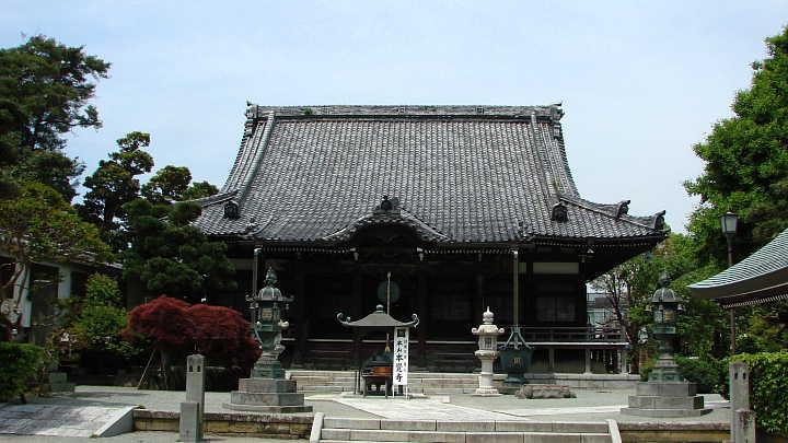 本覚寺 Hongakuji Temple 天空仙...